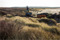 Haverdal Gru00E4vning i naturreservat 141130sony1883