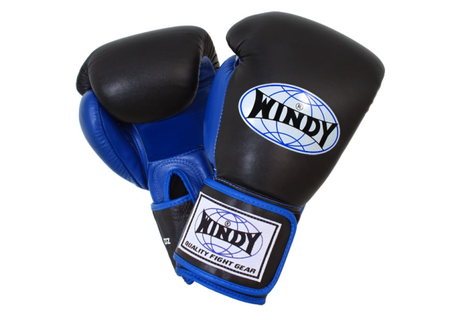Windy Boxing Glove