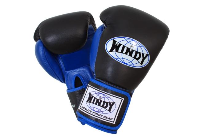 Windy Boxing Glove