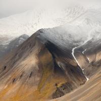 Svalbard (Aug 2014)digera
