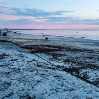 Neptuni åkrar, Öland (Juni 2018)