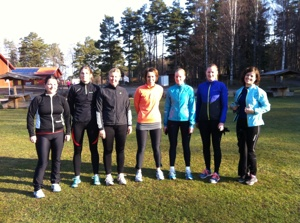 Delar av B.A.B.Y. Runners Team Linköping