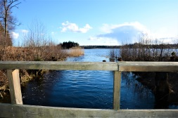 Sjön Muskan, på Södertörn