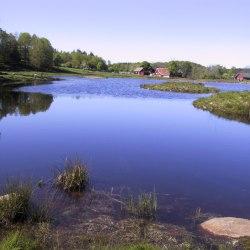 Eksjön fr norr