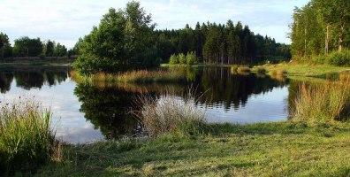 Eksjön från S juli 09-2