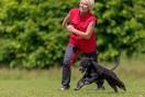 BAT-kurs för arga, frustrerande eller rädda hundar 19-20/5-18