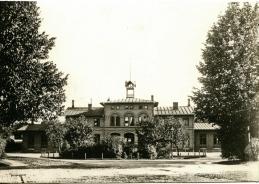 1902 från väster - mer uppväxta växter