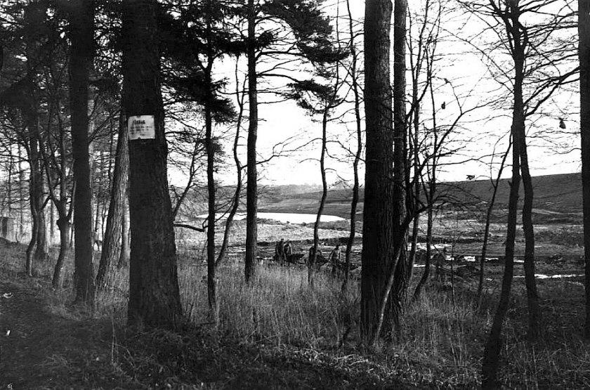 Våtmarkerna vid Harket som tycks ha torvbrytning. SAJ i bakgrunden med sina höga terasseringar. (Skövde Stadsmuseum)