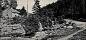 47. Rosenlund Billingen med Varnhemsvägen