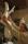 11. I JANUARI 2013 började Peter med delfiguren 'KASPER* på en stomme av armeringsjärn och frigolit. Frigoliten för att minska vikten. Blöt gips är tungt.