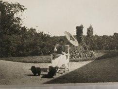 Grevinnan Blanche Bonde med sina Dvärgspetsar (copyright)