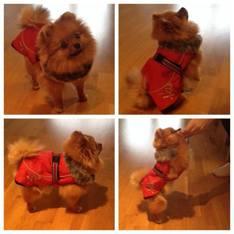 Chanel provar sin nya päls som hon skall ha i vinter