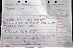 Enastående kritik av domare Rose-Marie Hartwig 26/8 Göteborg