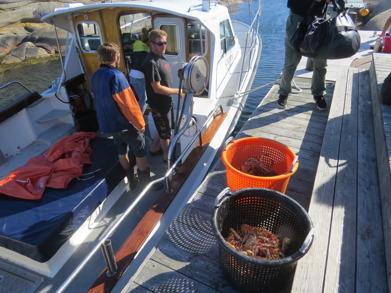Fångst av havskräfta och krabba.