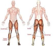 Bild hämtad från: fitnessanddefense.com