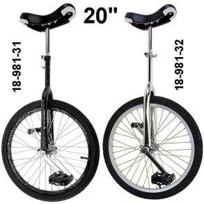 Enhjuling 20