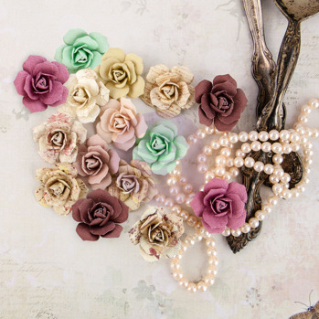 Prima Flowers Butterfly - Bulbe 580605 -