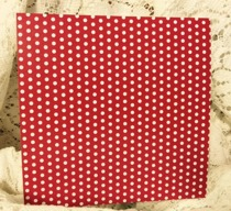 Rött med Vita Prickar 6x6