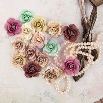 Prima Flowers Butterfly - Bulbe 580605