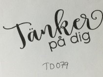 TD079