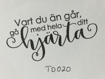 TD020 -