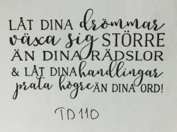 TD110 -