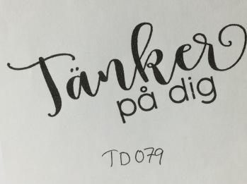 TD079 -