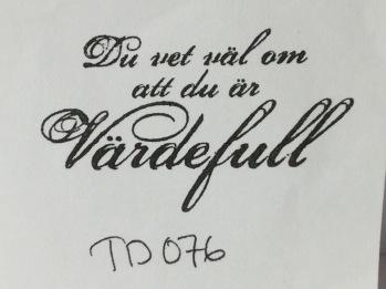 TD076 -