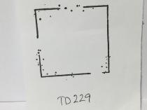 TD229