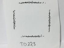 TD223