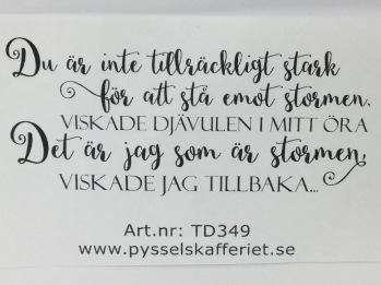TD349 -