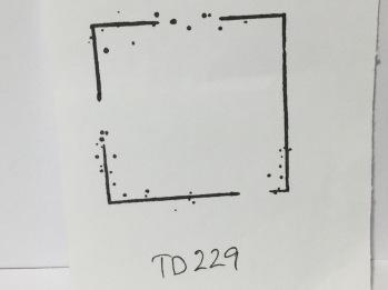 TD229 -