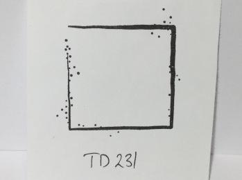 TD231 -