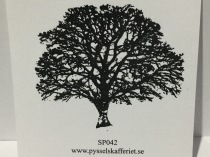 SP042