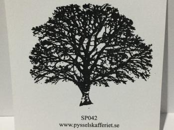 SP042 -