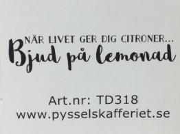 TD318 -
