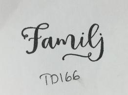 TD166 -