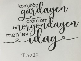 TD023 -