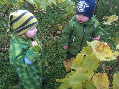 Astrid och Ludde diskuterar kanske om 2013 blir ett lika kämpigt vinodlarår som 2012? Eller om det i år blir druvor att mumsa i sig redan i augusti?