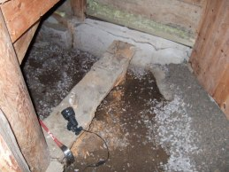 Svampangrepp i trapphusets golv