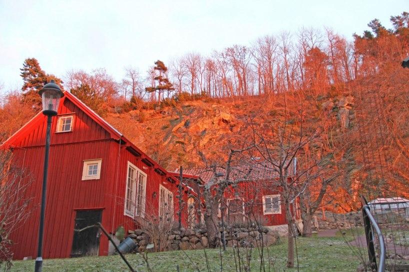 En solröd vinterdag  3 feb 2013. OBS Bilden är inte fejkad.