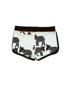 Shorts  Tapirs