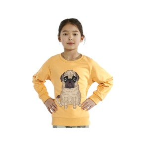 Reversible Sweatshirt Pug