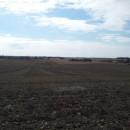 stora fält!